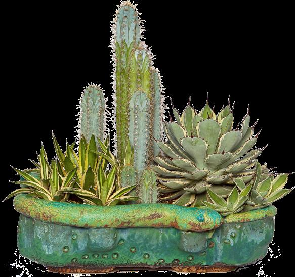 rick snake planter