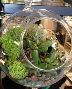 kit globe ball planted